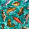 Quilting Treasures Fresh Catch Fish Turquoise