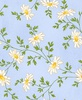 Maywood Studio Fresh As A Daisy Miniature Daisies Sky Blue