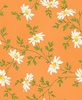 Maywood Studio Fresh As A Daisy Miniature Daisies Orange