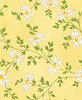 Maywood Studio Fresh As A Daisy Miniature Daisies Sunshine