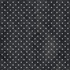 Windham Fabrics Gina Dot Black