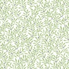 Quilting Treasures Circle of Friends Ferns White/Moss