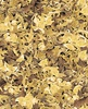 Quilting Treasures Labrador-Able Leaves Light Gold