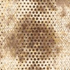 Anthology Fabrics Pop Dot Batik Coffee