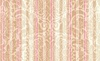 Maywood Studio Burgundy and Blush Stripe Blush