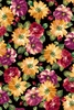 Quilting Treasures Danielle Watercolor Floral Black