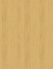 Wilmington Prints 7th Inning Stretch Wood Texture Golden Tan