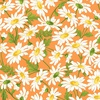 Maywood Studio Fresh As A Daisy Daisies Orange