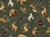Quilting Treasures Timberland Trail Tossed Animals Forest