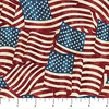 Northcott Stonehenge Stars and Stripes Flannel Flags