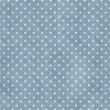 Windham Fabrics Gina Dot Chambray