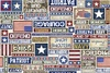 Quilting Treasures All American Patriot Text Cream