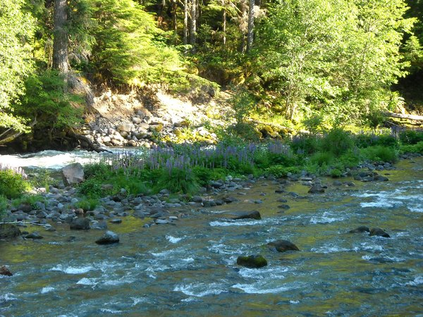 North Santiam River in Oregon